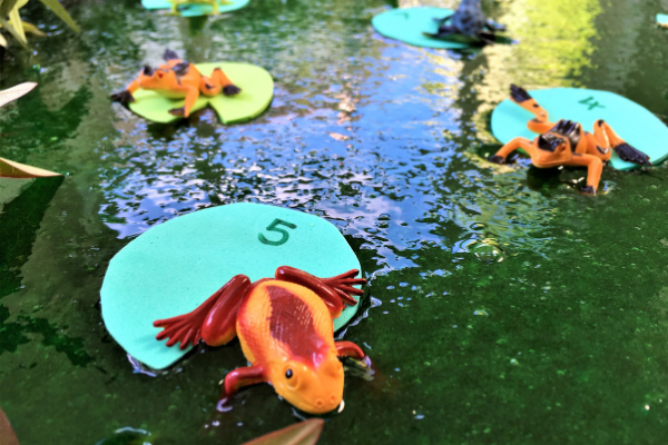 frogs on numbered lily pads in green slime