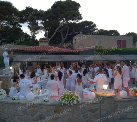 pro anim lyon mariage en plein air white party de c et x sur l 39 ile de bendor. Black Bedroom Furniture Sets. Home Design Ideas