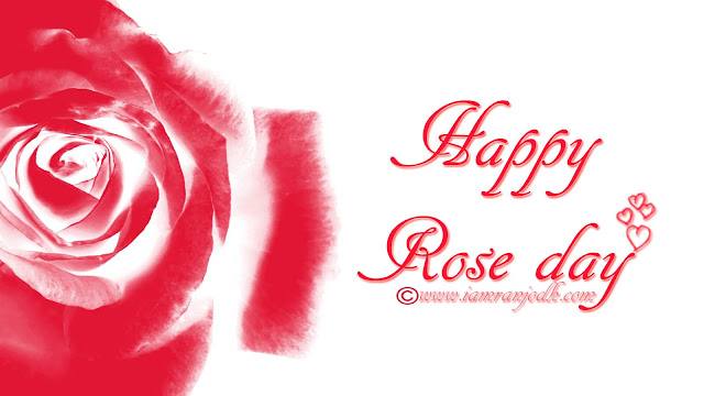Rose Day Messages, SMS, Quotes 2017 Of Love