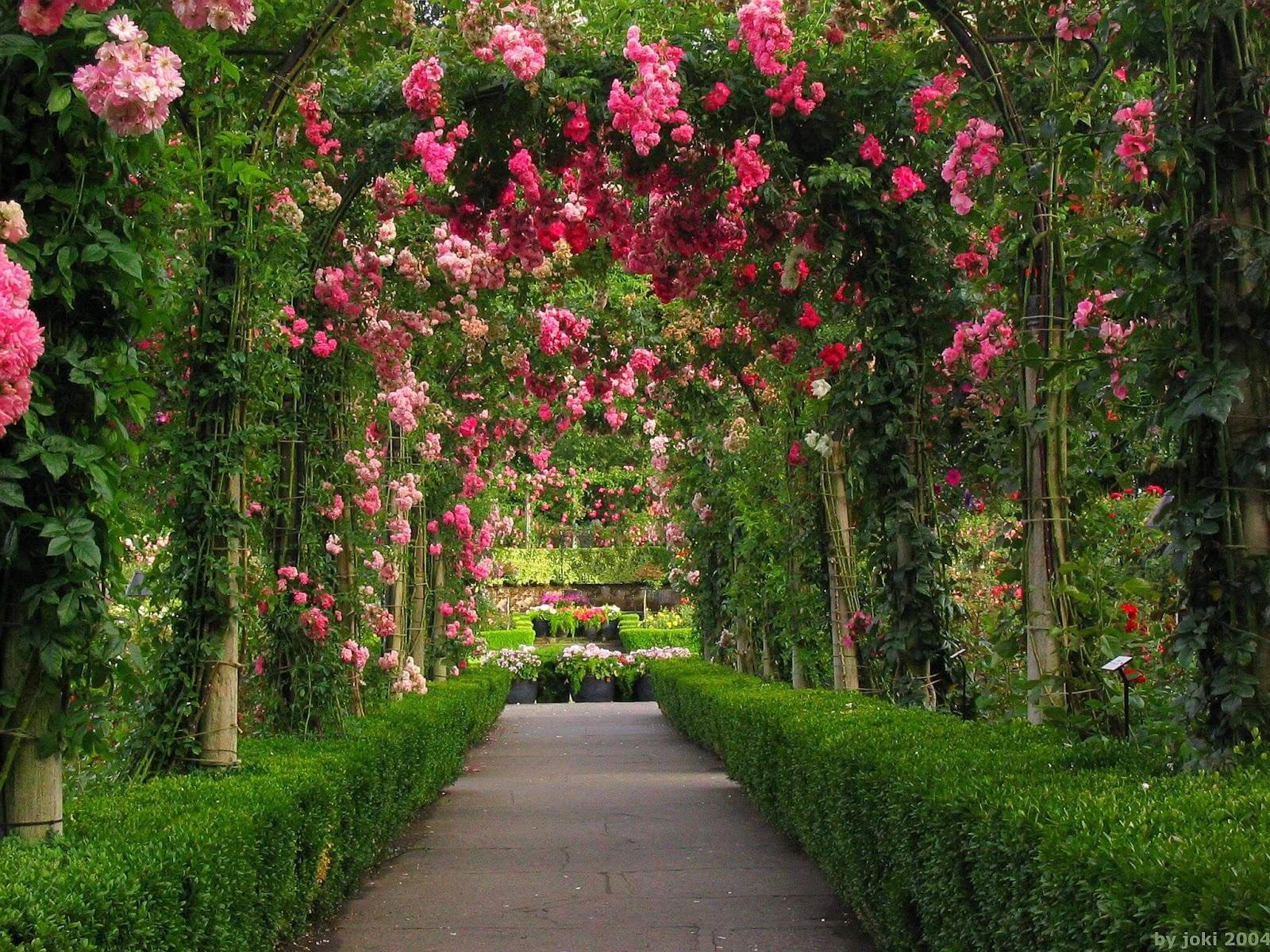 Wallpaper download garden - Download Garden Wallpaper Big Size