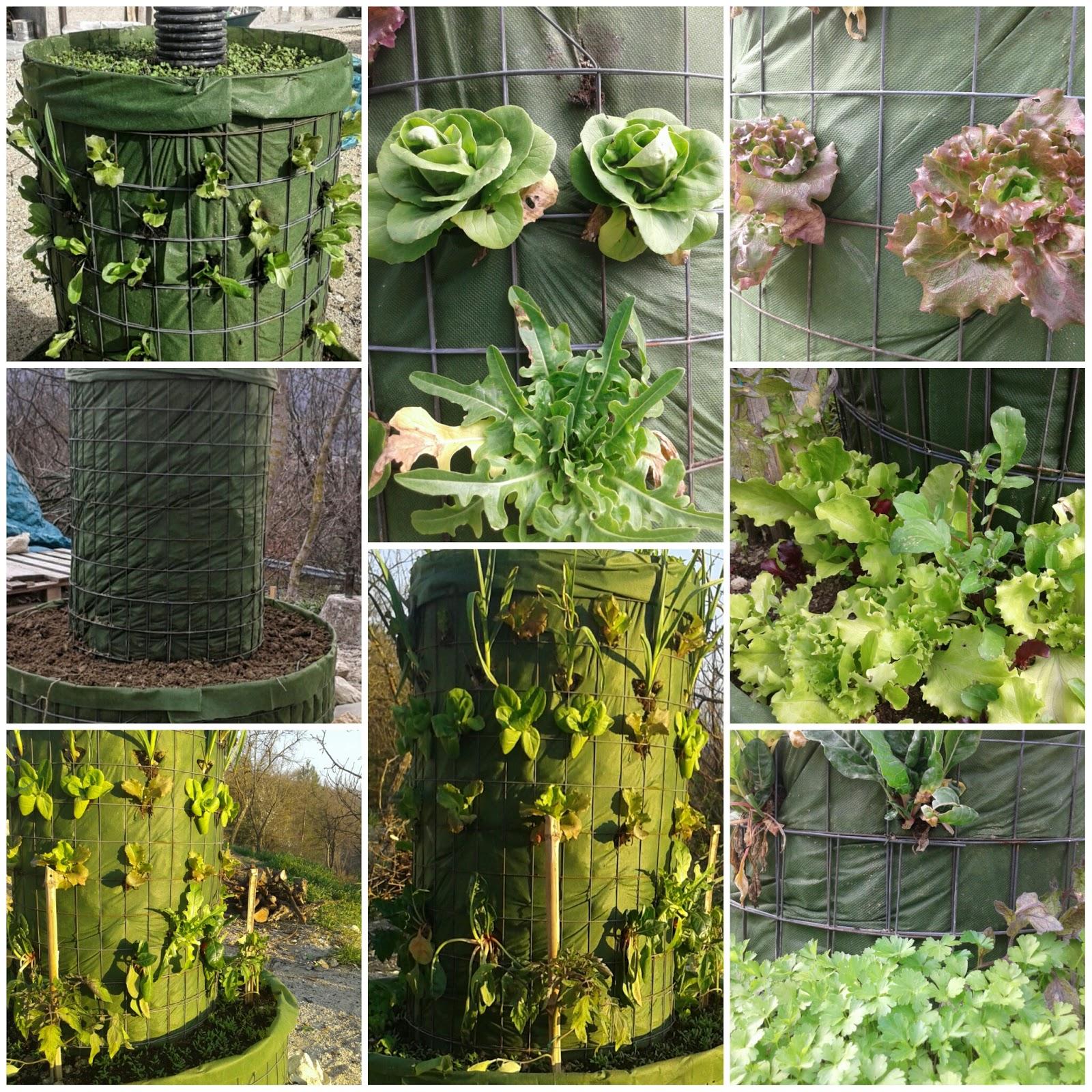 Il giardino di zerdesht come realizzare un orto verticale - Come realizzare un giardino verticale ...