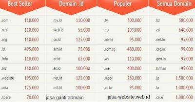 jasa ganti domain