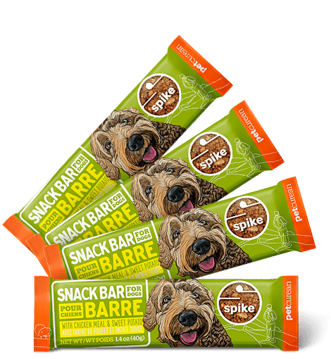 Snack Bar for Dogs with Chicken Meal & Sweet Potato