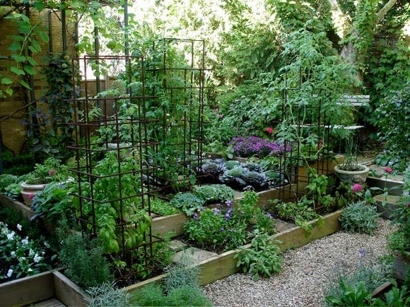 Southern Gardening And Food Garden Bed Ideas