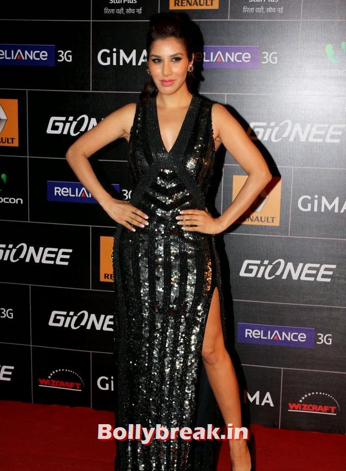 Sophie Choudry, 4th Gionee Star GiMA Awards Photos, Sophie Choudry on Red carpet of Different Award Functions