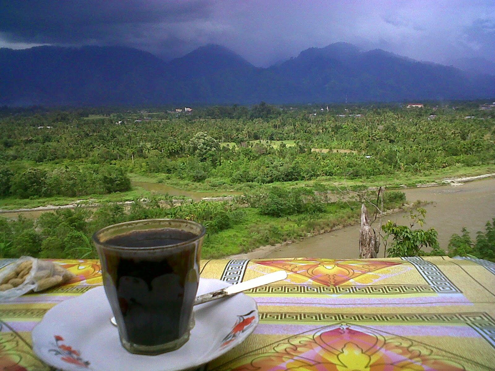 Hasil gambar untuk kopi kuta cane