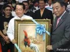 cockfight ayam laga thailand