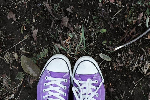 converse shoes against leaves