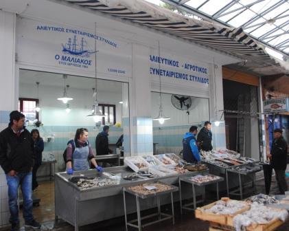 Αλιευτικός Συνεταιρισμός Στυλίδας