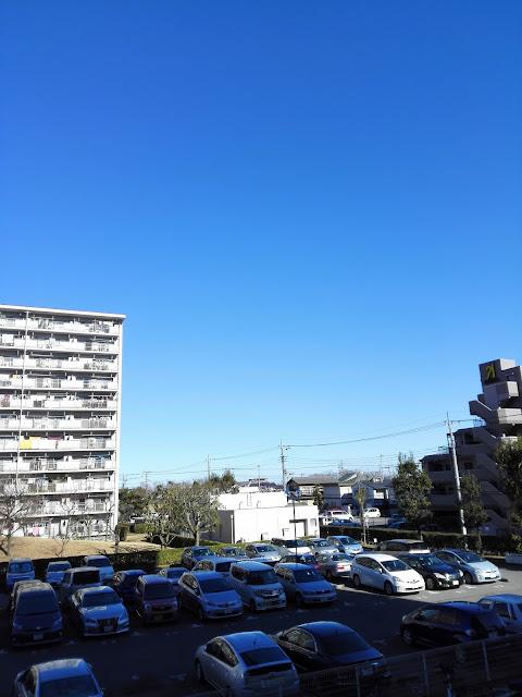 青く晴れ上がった元旦の空