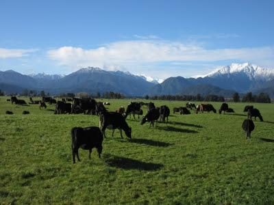 Valle de Hokitika, hacia la garganta, Nueva Zelanda
