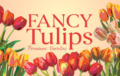 Fancy tulip trend for Valentine's Day 2018