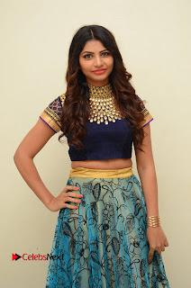 Actress Varsha Pictures in Saree at Dada Puttista Audio Launch  0063