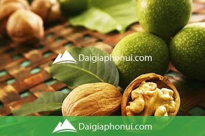 CÁCH CHẾ BIẾN QUẢ ÓC CHÓ - DAI GIA PHO NUI NUTRINUT - DAIGIAPHONUI.COM