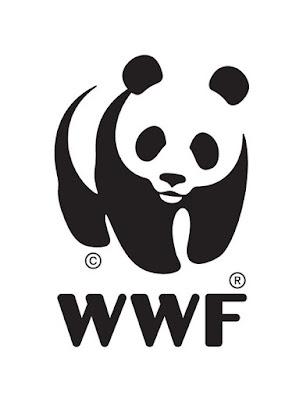 """Warsztaty WWF """"Ryby wybrane"""""""