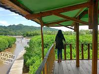 Keindahan, Lokasi dan Rute Hutan Mangrove Ayah