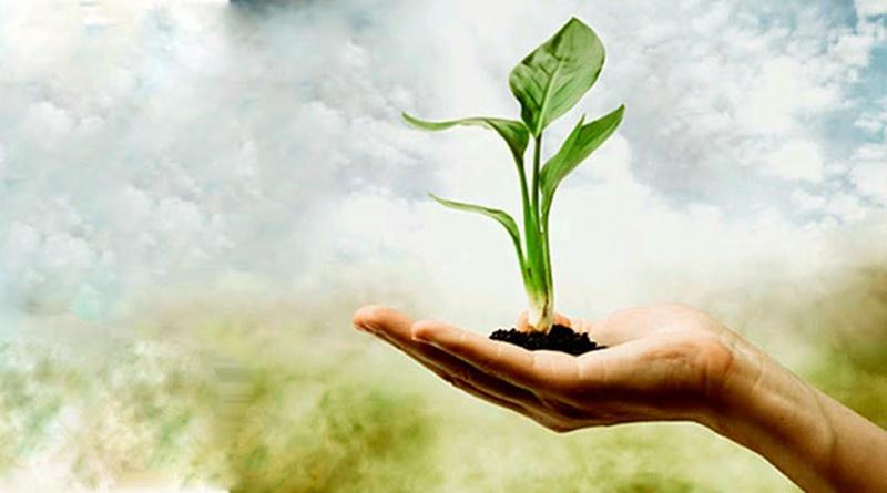 Seis Motivos para Devolvermos o Dízimo e Ofertar na Casa de Deus #6 Prova de Fé