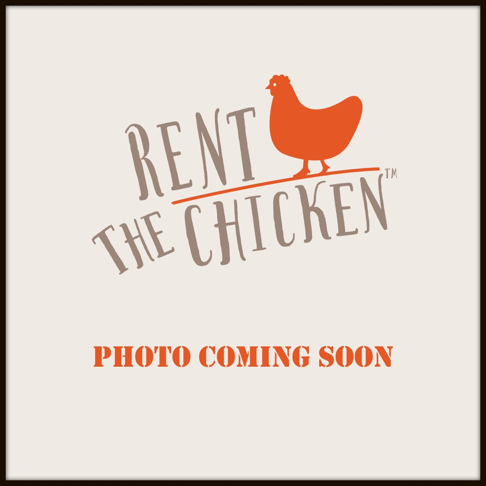 Rent The Chicken: About Us