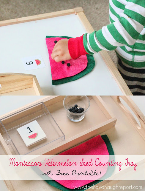 This Montessori inspired counting tray is a fun addition for summer. With a free printable it can be easily recreated for children starting to explore counting and math!