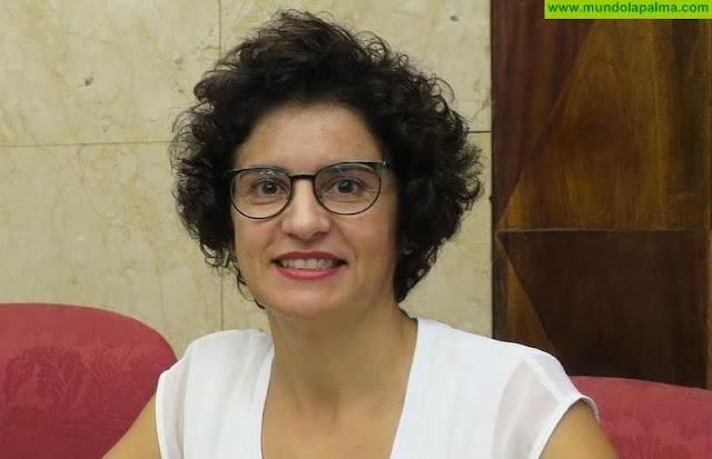 El Cabildo prestará servicio de atención psicológica e intervención con menores víctimas de violencia de género
