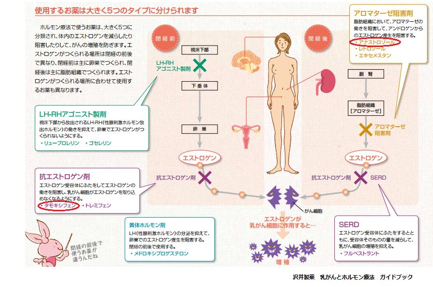 レリン リュー プロ 球脊髄性筋萎縮症に対する酢酸リュ―プロレリンの追加比較試験(JASMITT