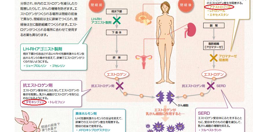 ストロ ゾール 副作用 アナ アナストロゾール錠1mg「NK」の基本情報(薬効分類・副作用・添付文書など)|日経メディカル処方薬事典
