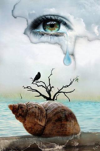 Resultado de imagem para lágrimas