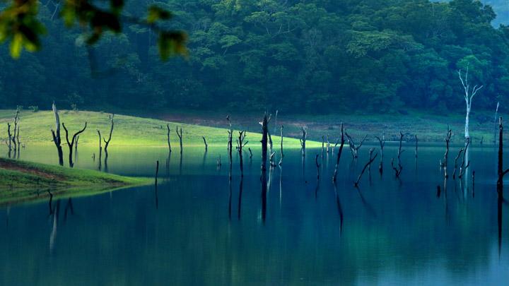 Best Resort in Thekkady