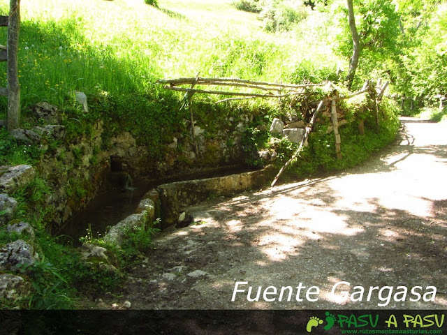 Fuente Gargasa, Pendones, Caso