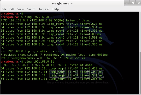how to check dhcp ip address in linux