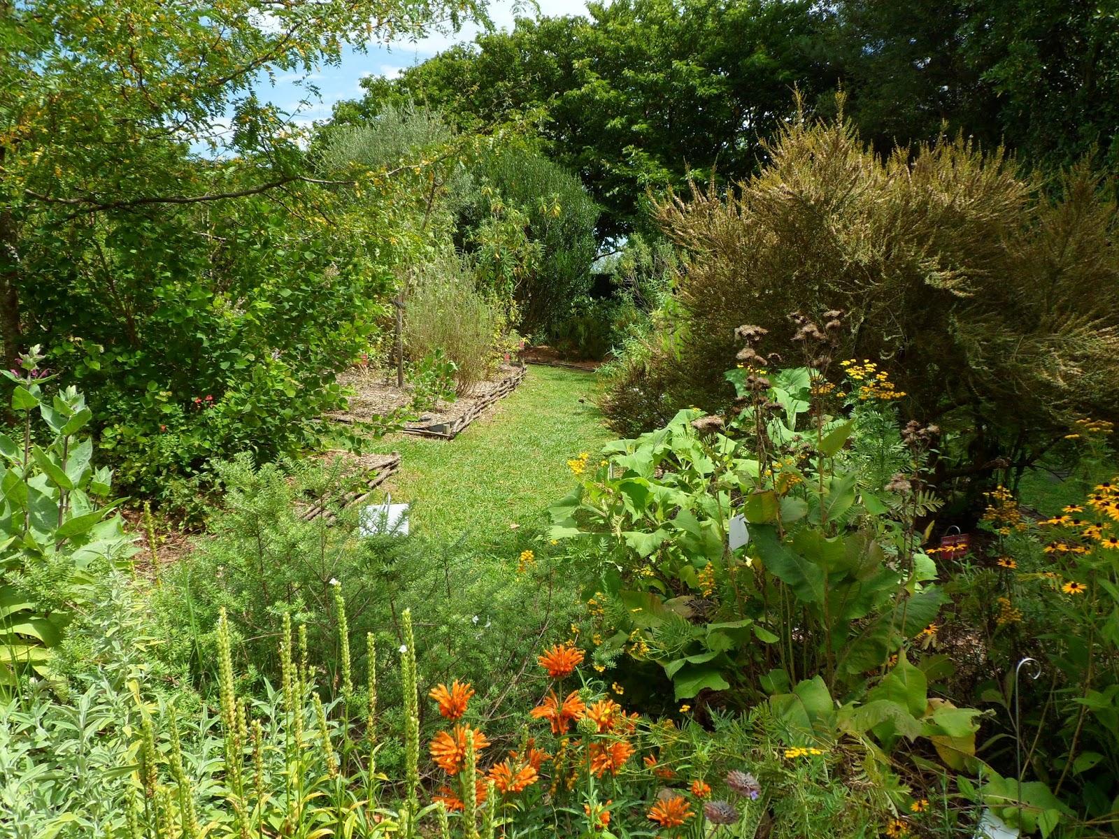 Un jard n en mi azotea cursos de paisajismo for Paisajismo jardines fotos
