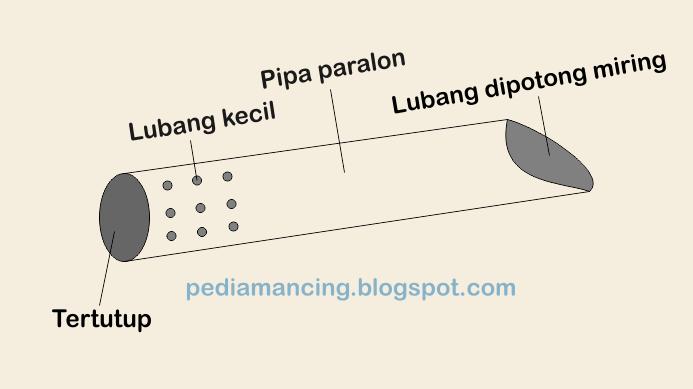 cara menangkap belut dengan paralon pipa