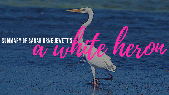 A White Heron by Sarah Orne Jewett- Summary