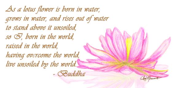 Lotus-Buddha-for-web.png