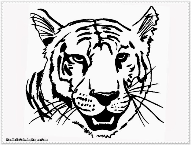 Realistic Tiger Coloring Pages With Tiger Coloring Page
