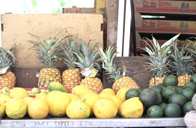 Fruit Stand (roadside along Kamehameha Hwy)