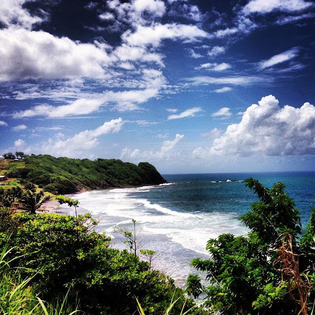 Sweet Kwisine, mérou, citron vert, persil, thym, ail, sauge, oignon pays, four, Martinique
