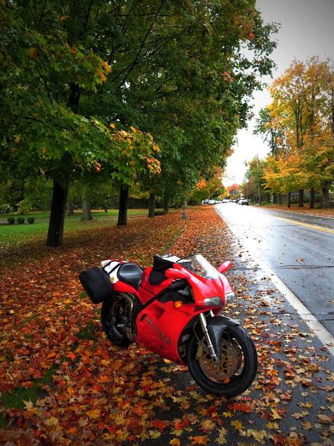 Ducati 916 in Autumn Upstate New York