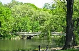Bow Bridge, Central Park Pedicab Tours