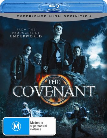 The Covenant (2006) Dual Audio Hindi 480p BluRay 300MB