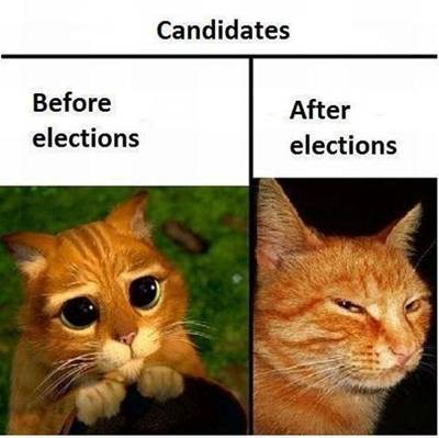Image result for politician jokes