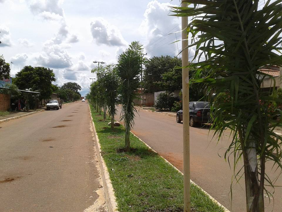 Oliveira de Fátima Tocantins fonte: 3.bp.blogspot.com