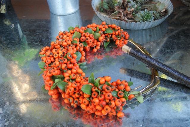 Mit Wickeldraht wird der Kranz aus Feuerdornbüscheln gewickelt