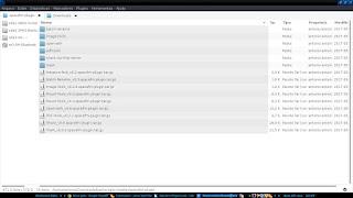 SpaceFm plugins