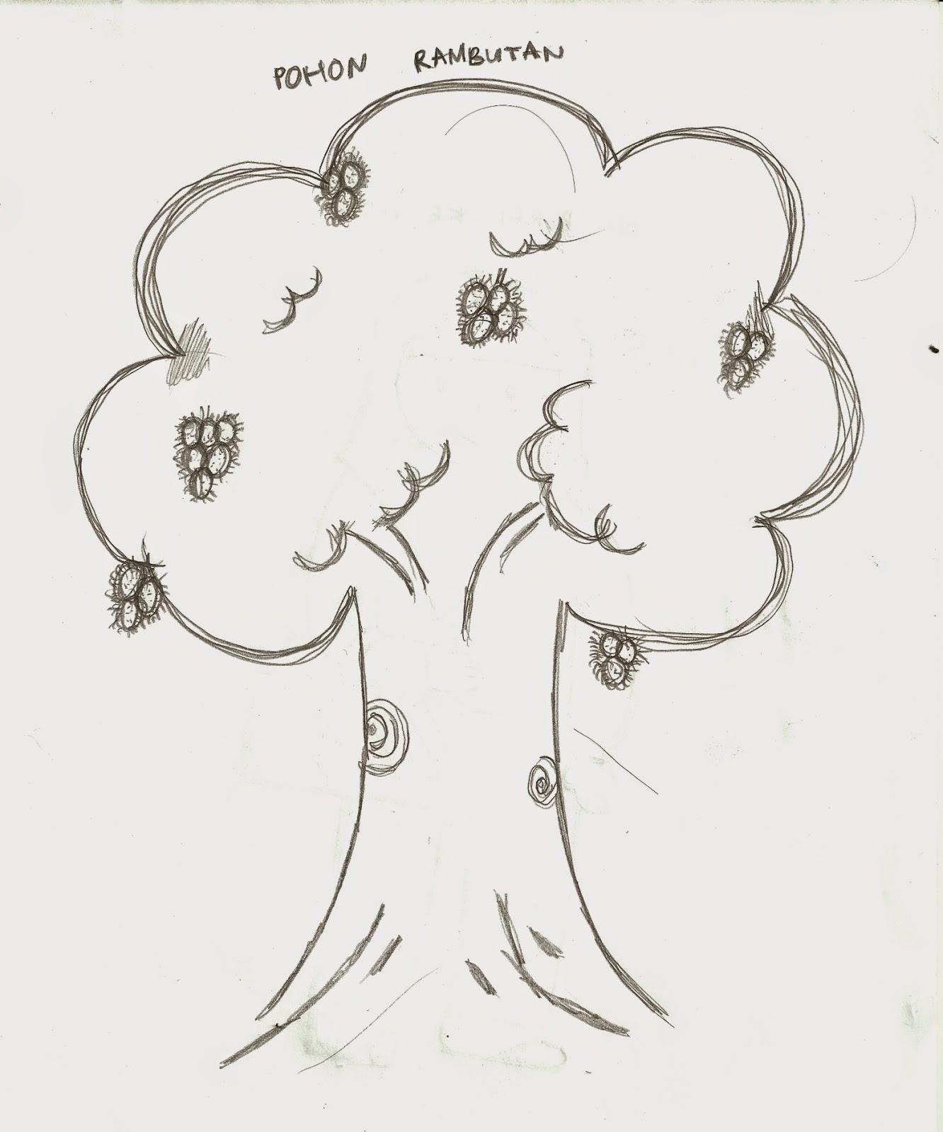 Mewarnai Gambar Pohon Rambutan Coloring N
