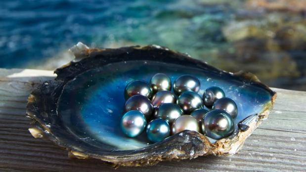Los secretos de la perla negra
