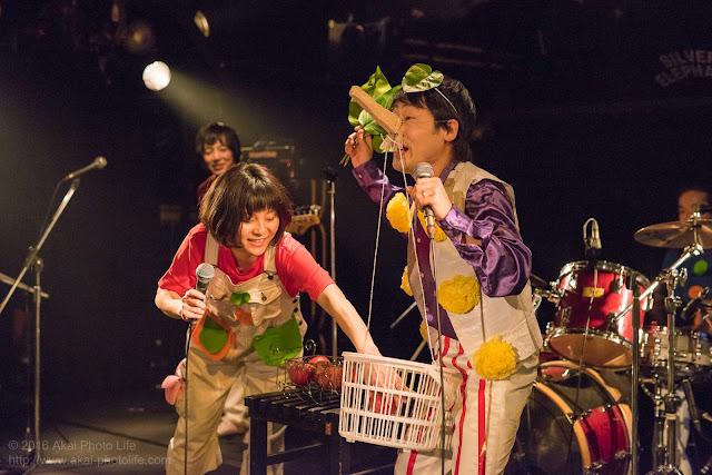 シルエレゆき birthday 企画ライブのおかさんといっしょのコピーバンドのかぞえてんぐの写真