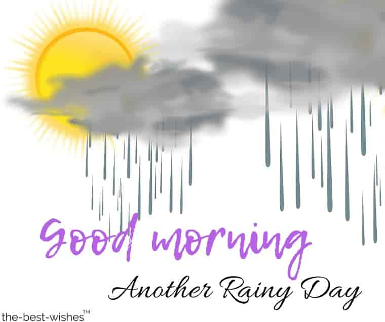 good morning another rainy day