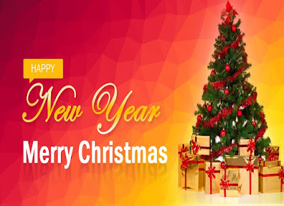 2017 Happy New Year and Merry Christmas