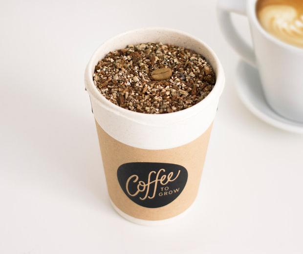 Coffee to Grow